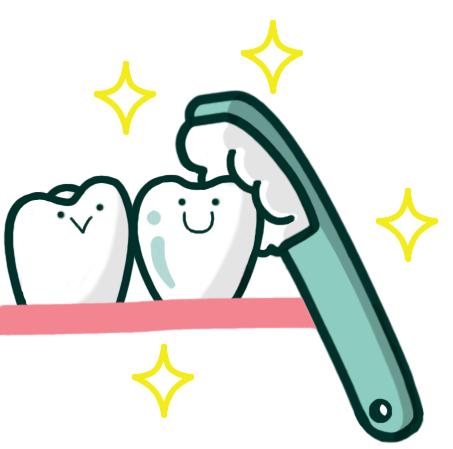 電動歯ブラシについて